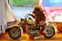 Teddybären-Hotel15