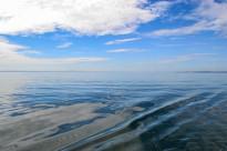 Tag am See (1 von 1)-5