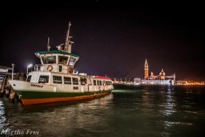 carnevale venezia (1 von 1)-136