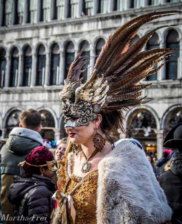carnevale venezia (1 von 1)-64