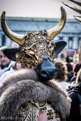 carnevale venezia (1 von 1)-66