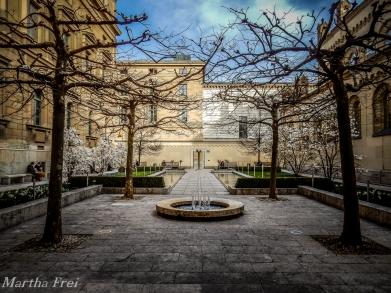 kabinettgarten (1 von 1)-7