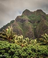 hawaii-07-11
