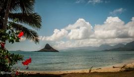 hawaii-12-10