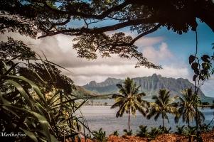 hawaii-16-7