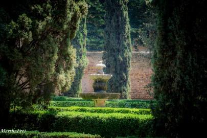 giardino giustio iii-9476