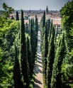 giardino giustio iii-9499