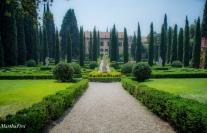 giardino giustio iii-9509