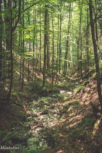 leinbachfälle-0593