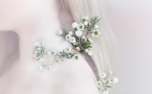 flower-1268750_640