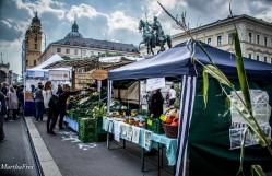 bauernmarkt-2928