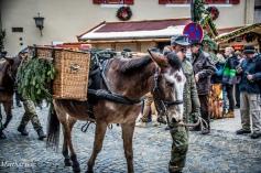 Mulis und Soldaten der Gebirgsjäger-Tragtierkompanie paradieren vorbei