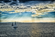 bodensee xii-