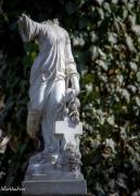 südfriedhof2-7673