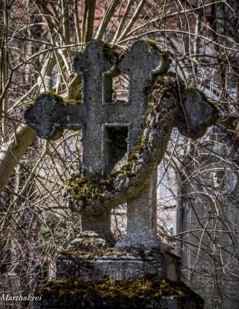 südfriedhof2-7675