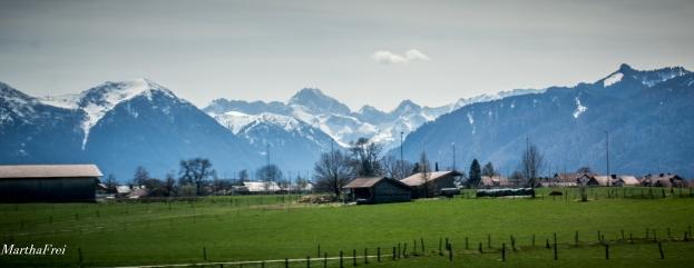 mittenwald-8482