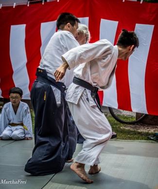 japanfes-0175